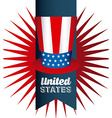 inited states celebration vector image vector image