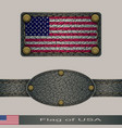 label of a flag of usa vector image