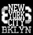 new york typograph vector image vector image