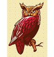 owl stand on tree branch vector image