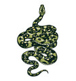 snake in vintage style serpent cobra or python or vector image vector image