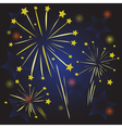 Starry fireworks vector image vector image