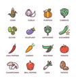 vegetables vegan raw food colored icons set vector image