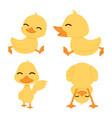 cute little yellow ducks set vector image vector image