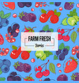 farm fresh banner with ripe berries vector image vector image
