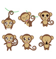 Funny Monkeys vector image