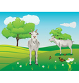 Goat and Green Lawn3 vector image vector image