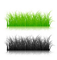 green and black silhouette grass isolated on vector image vector image