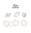 linear doodle hello autumn set leaves set vector image vector image