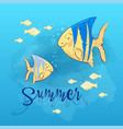 postcard print beach summer party with sea fish vector image vector image