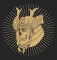 samurai skull vector image vector image