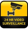 Video surveillance sign cctv label vector image vector image