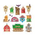 birdhouse cartoon birdbox and birdie wooden vector image vector image