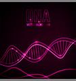 dna molecule image vector image