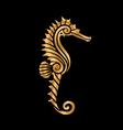 golden seahorse vector image