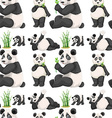 Seamless panda and bamboo vector image vector image