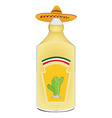 Tequila bottle vector image vector image