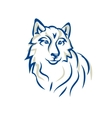 white wolf Malamute Siberian husky vector image vector image