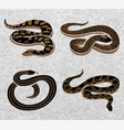 black snakes set vector image