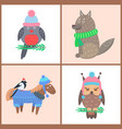 collection posters animals vector image vector image
