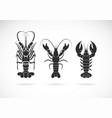 group lobster design on white background sea vector image