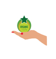 organic icon in woman hand vector image vector image