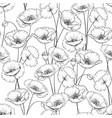 pattern poppy vector image vector image