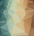 PolygonBackground vector image vector image