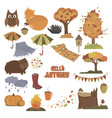 set autumn elements collection autumn vector image