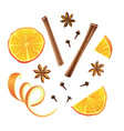 set of orange star anise cloves and cinnamon vector image vector image