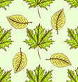 Sketch leaves in vintage style vector image