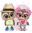 two cartoon owls on a heart background vector image vector image