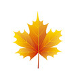 autumn golden yellow leaf logo vector image