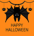 bat hanging spider dash line web happy halloween vector image