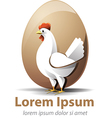 Chicken egg vector image