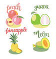 fruits peach guava melon pineapple isolated and vector image