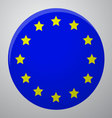 Icon European Union Flag vector image vector image