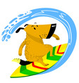dog on the surfboard the pet is engaged in vector image vector image