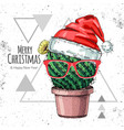 hand drawing cactus in new year hat vector image