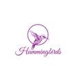 hummingbird drawing logo design vector image