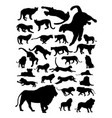 lions animal detail silhouette vector image