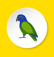 pionus parrot icon in flat style vector image