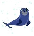 Sea Lion Drawing vector image
