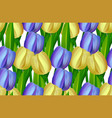 seamless pattern made yellow and blue tulips vector image