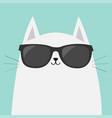 white cat wearing sunglasses eyeglasses black vector image vector image
