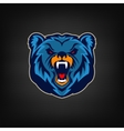 Angry bear head Sport team mascot vector image