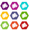 bulldog dog icon set color hexahedron vector image vector image