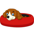cartoon happy dog relaxing in the lair vector image vector image