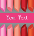 colorful lipstick label board vector image