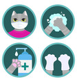 covid19-19 safety measures - cute cat instruction vector image